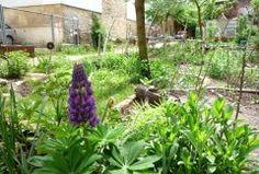 WasDerBürgerSoLiest: Essbare Städte   Guten Appetit !  Urban Gardening