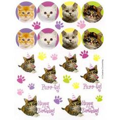 Kitty Cat Stickers - Girls Kitty Cat Party Supplies