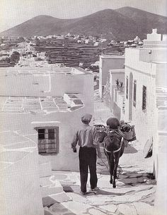 Siphnos, Greece in the 1950's.