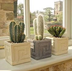 Small Key Cacti And Succulents, Planting Succulents, Mini Cactus Garden, Contemporary Planters, Succulents In Containers, Cast Stone, Indoor Planters, Plant Pots, Pottery Designs