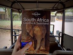 Going on safari in Kruger National Park