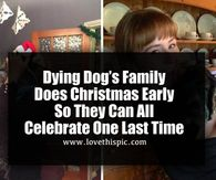 Dying Dog's Family Does Christmas Early So They Can All Celebrate One Last Time