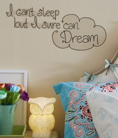 "Sometimes I have my best ideas when I'm supposed to be sleeping -- in fact, my Sleep Dream Wall Decal was totally one of them! The quote on it really inspires me: ""I can't sleep, but I sure can dream."" The best part? You can stick it on any flat surface and even remove it and reuse it without messing up your walls! Goodnight gorgeous, xoxo Beth<br><br>W 26.25"" x H 13""<br>Style: 1065. Imported."