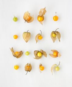 Mariana Velasquez food styling with cape gooseberry. Fruit Photography, Food Photography Styling, Still Life Photography, Narrative Photography, Cape Gooseberry, Prop Styling, Fruit And Veg, Vine Fruit, Slow Food