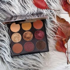 🍂 It's the 1st day of fall AKA time to grab our new limited-edition Autumn Glow Eyeshadow Bundle. It's now available in our store and is sure to keep you warm and cozy all season long! $49 ($66 value) ---> click the link in our bio to shop!