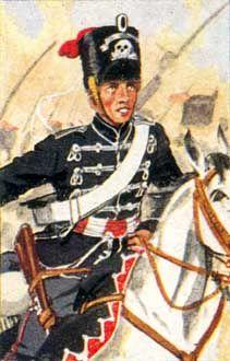 Preußische Husaren-Regimenter