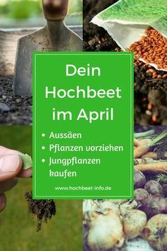 Pflanzkalender Gartenkalender April - Hochbeet Garten Selbstversorgung