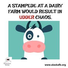 New dairy farm humor Ideas Dairy Free Soup, Dairy Free Snacks, Dairy Free Recipes, Farm Humor, Dairy Cattle, Free Groceries, Dairy Queen, Friday Humor, Free Food