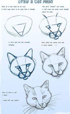 cómo dibujar una cabeza de gato 1