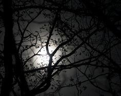 Loved the full moon in March 2012