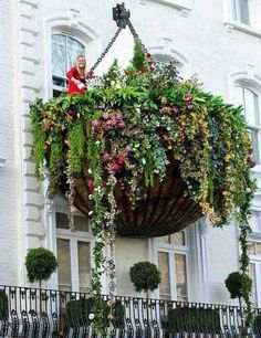 Must be the biggest hanging basket balcony in the world?