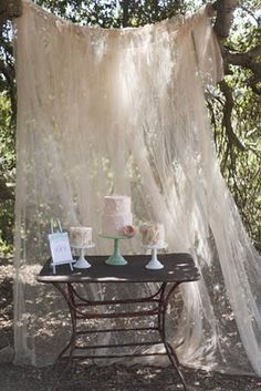 party decor - love the idea of lace behind the cake table
