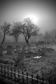 "Black & White"" Gothic view of Cemetary"". Cemetery Headstones, Old Cemeteries, Cemetery Art, Graveyards, Spooky Places, Haunted Places, Abandoned Places, Scary, Creepy"