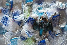 Chris Packham photographs the impact of litter - in pictures