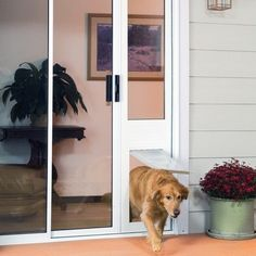 """The Thermo Panel IIIe Incorporates Dual-Pane Low """"E"""" Glass with the 'Endura Flap' to Make the Best Patio Panel Pet Door on the Market Today."""