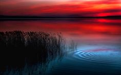 I alone cannot change the world, but I can cast a stone across the waters to create many ripples. -Mother Teresa