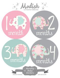 FREE GIFT Elephant Monthly Baby Stickers Baby Girl от ModishCC