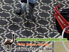 Pet Odor Removal Palm Beach  My company, Oriental Rug Cleaning By Hand, is made up of people with commitment and enthusiasm. We are very passionate when it comes to rug maintenance and cleaning.