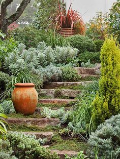 Connect two levels with a curving stairway that minimizes the severity of the slope. Drought-resistant groundcovers and succulents prevent erosion on steep grades and make the journey more interesting.
