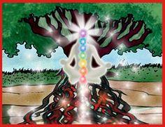 earth grounding cord meditation balancedwomensblog.com