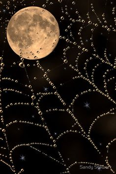 Spiderweb lace draped moon ✯ Dew on the Moon - Sandy Stewart✯