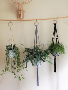 Macrame Plant Hanger85cm Home decor wall hanger cotton