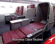 Qantas Business Class Special to Asia, expiring 2Apr Animal Shop, First Class Flights, Business Class, What Inspires You, Beautiful Body, Cool Items, Bullshit, Pet Shop