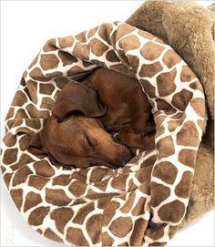 Amazon.com: Giraffe Cuddle Cup Bed for Dogs by Susan Lanci: Pet Supplies
