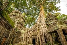 Siem Reap Itinerary 3 days: Angkor Temples without crowds Cambodia Itinerary, Cambodia Beaches, Vietnam Tours, Beautiful Places To Live, Thing 1, Siem Reap, Tourist Spots, Angkor, Budget Travel