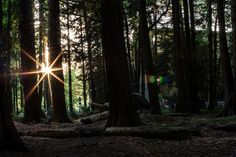 Watching the sunset by tyfn, via Flickr | Canon XSi+50mm f/1.4 | ISO 100, f/22, 2 sec