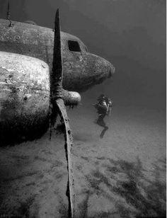 Beautifully deep and historical!!