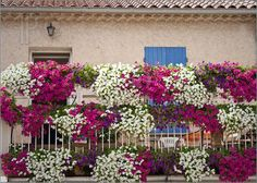 Balcony with flowers in Provence, France
