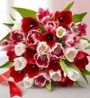 1-800-Flowers: Valentine's Day Flowers and Gifts starting at only $29.99