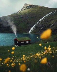 Would you live here? A home in the Saksun Faroe Islands. Photo by Would you live here? A home in the Saksun Faroe Islands. Photo by The Places Youll Go, Places To Go, Faroe Islands, Cabins In The Woods, Belle Photo, Beautiful Landscapes, The Great Outdoors, Wonders Of The World, Countryside