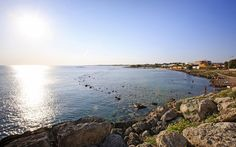 Taranto golfo mar piccolo