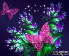 Purple Butterfly, Butterfly Flowers, Beautiful Butterflies, Manado, Cute Gifs, Butterfly Wallpaper, Beautiful Pictures, Creations, Iphone Wallpapers