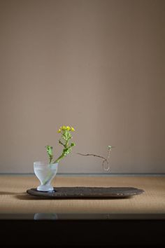 panorama - artist index & web magazine Ikebana, Flower Arrangement, Floral Arrangements, Japan Flower, Green Art, Arte Floral, Wabi Sabi, Shops, Trees To Plant