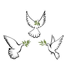 Peace+dove+vector+369774+-+by+Yorrico on VectorStock®