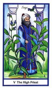 The High Priest - The Hierophant - Herbal Tarot Deck