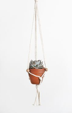 DIY macrame plant hangers - easy version __ Molly from Almost Makes Perfect skips the daunting knot patterns and uses 3 knots and 3 beads (between the end knots).