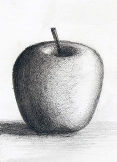 62 charcoal fruits ideas d pencil drawings, drawings ve art Shading Drawing, Pencil Sketch Drawing, Pencil Art Drawings, Painting & Drawing, Nose Drawing, Art Drawings For Kids, Art Drawings Sketches Simple, Realistic Drawings, Easy Drawings