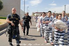 44 Best Maricopa: America's Toughest Jail images in 2018 | Maricopa