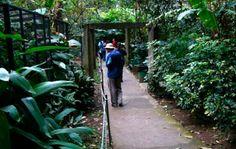 Parque Zoologico Simon Bolivar, Costa Rica