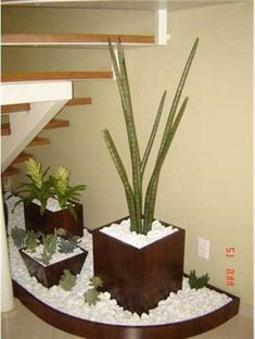 Jardim no vão da escada 008 Small Room Interior, Interior Stairs, Interior Garden, House Plants Decor, Plant Decor, Small Garden Landscape, Font Design, Stair Decor, Corner Garden