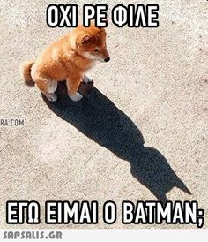 Funny Animal Memes, Stupid Funny Memes, Funny Animals, Greek Memes, Funny Greek Quotes, Jokes Images, Batman, Old Memes, Funny Phrases