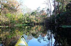 Wekiwa Springs State Park Apopka, Florida