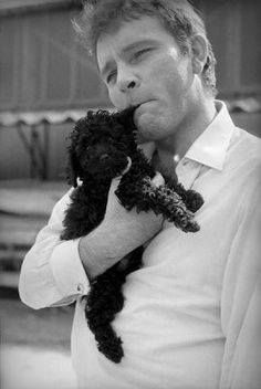 Richard Burton. #iLoveAnimalsToo #ancheIoAmoGliAnimali #yoTambienMeEncantanLosAnimales