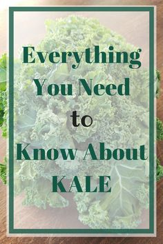 Everything You Need to Know About Kale