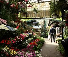 Marché aux fleurs - Practical Info - Entirely dedicated to flowers, this picturesque little market on the l'île de la Cité will be your most fragrant stop along the banks of the river Seine.