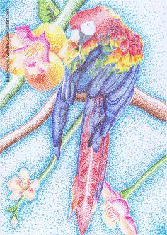 Parrot -Pointillism- by Kendrass.deviantart.com